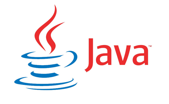 java programming at ignitho